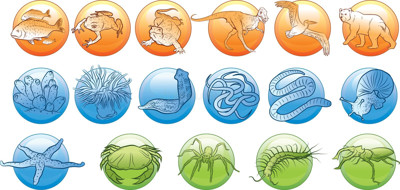 Djurkungarike vektor illustrationer
