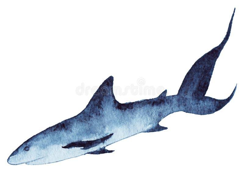 Djurliv för djur för haj för vattenfärghavshav stock illustrationer
