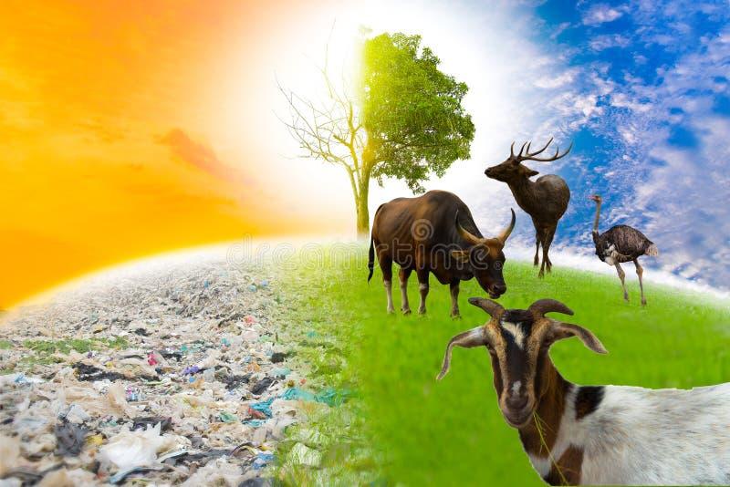 Djurliv finns inte den gröna världen med djur, och stora träd älskar världen arkivfoton