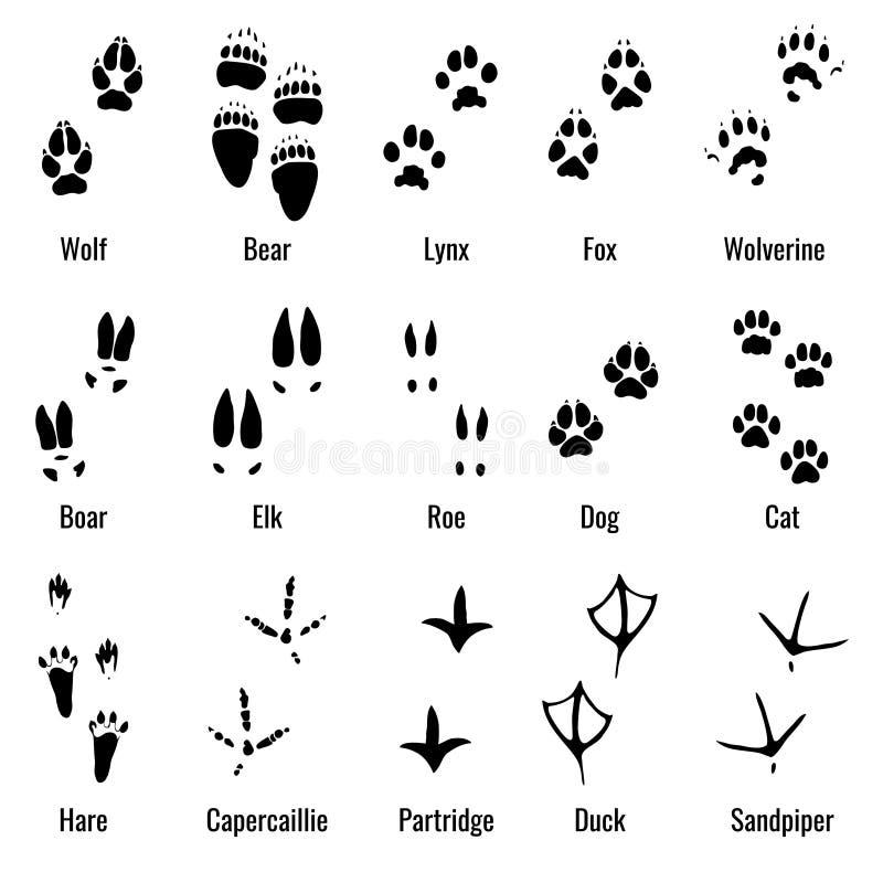 Djurlivdjur, reptilar och fåglar fotspåret, djur tafsar tryckvektoruppsättningen royaltyfri illustrationer