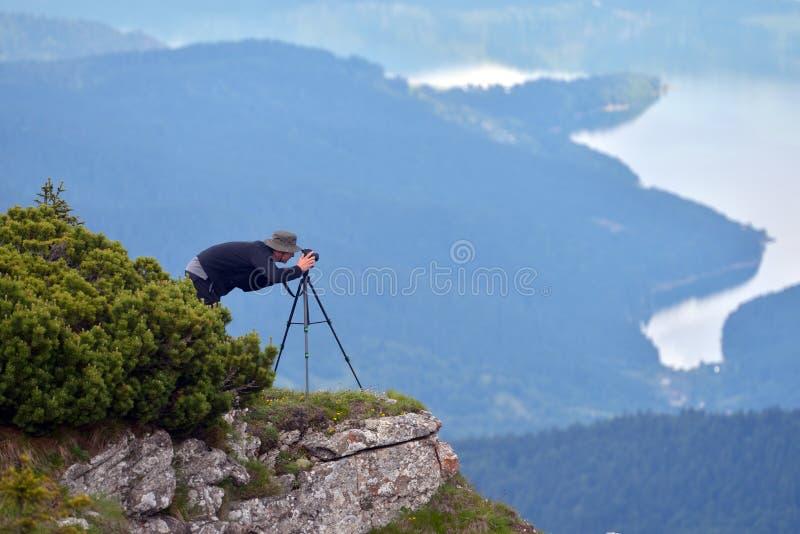 Djurlivfotograf som är utomhus- i höst fotografering för bildbyråer