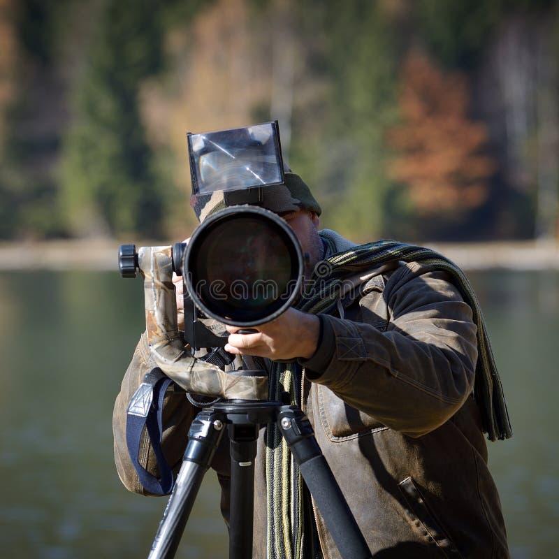 Djurlivfotograf som är utomhus- i handling arkivfoto