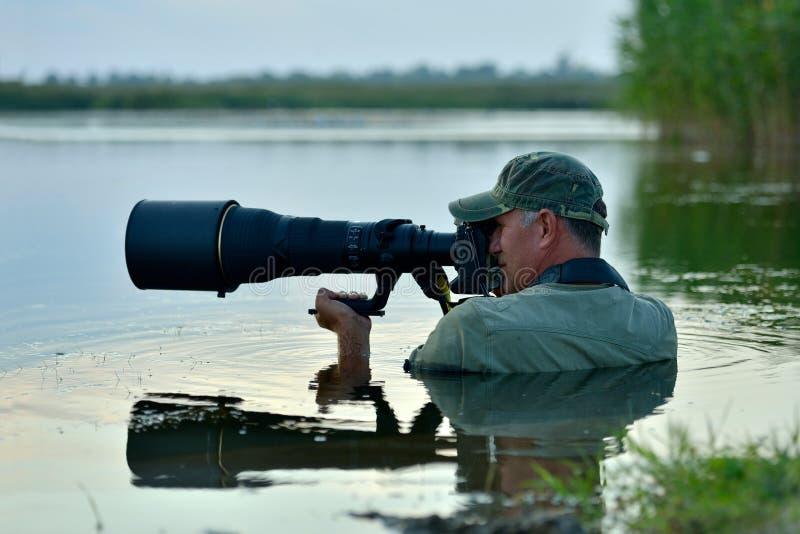 Djurlivfotograf som är utomhus- i handling royaltyfri foto