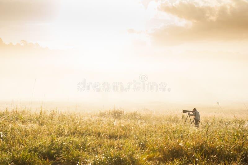 Djurlivfotografen är i den guld- grässlätten under sunshen arkivfoto