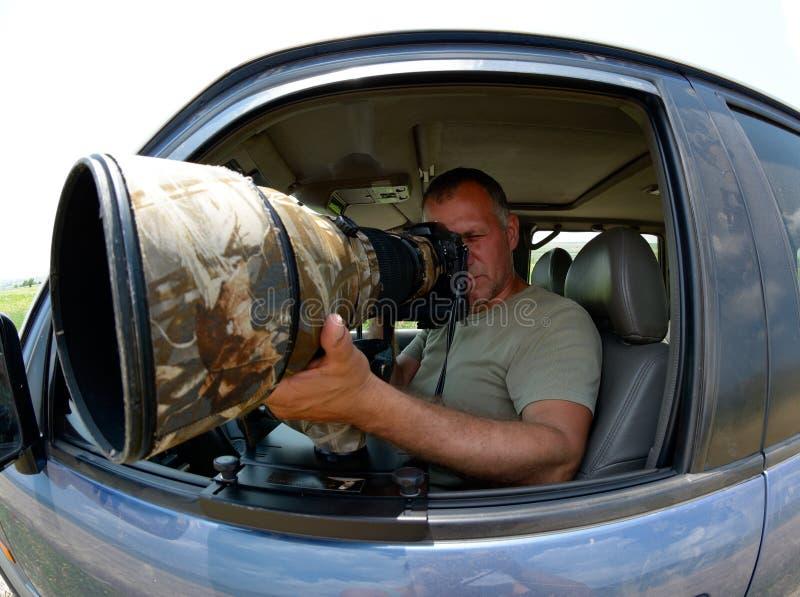 Djurlivfotografsammanträde i bilen arkivfoton