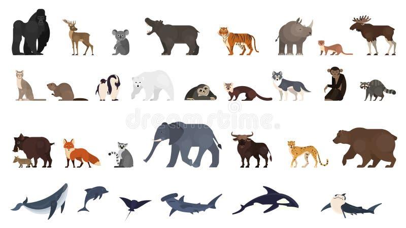 Djuruppsättning Samling av exotiskt och vilda djur royaltyfri illustrationer