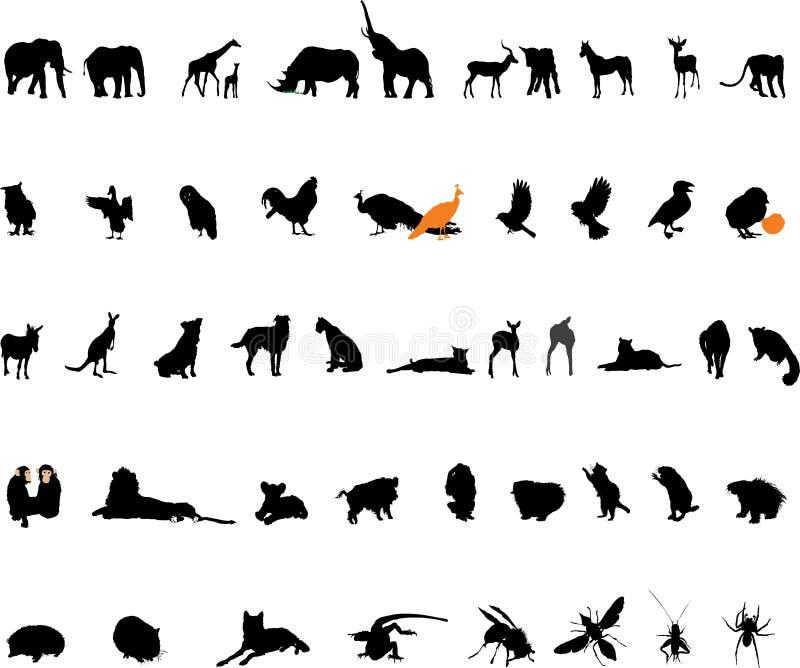 djurvektor vektor illustrationer