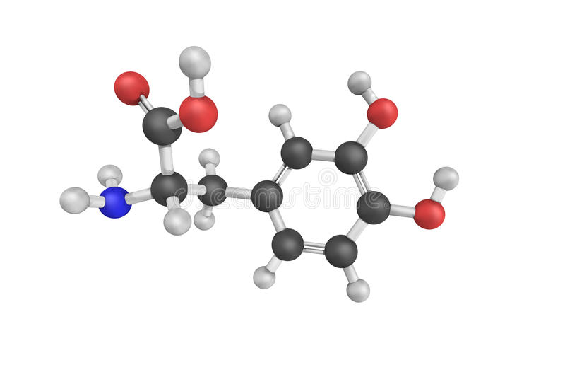 DL-DOPA, eine Beta-hydroxylierte Ableitung des Phenylalanins Das d lizenzfreie stockfotos