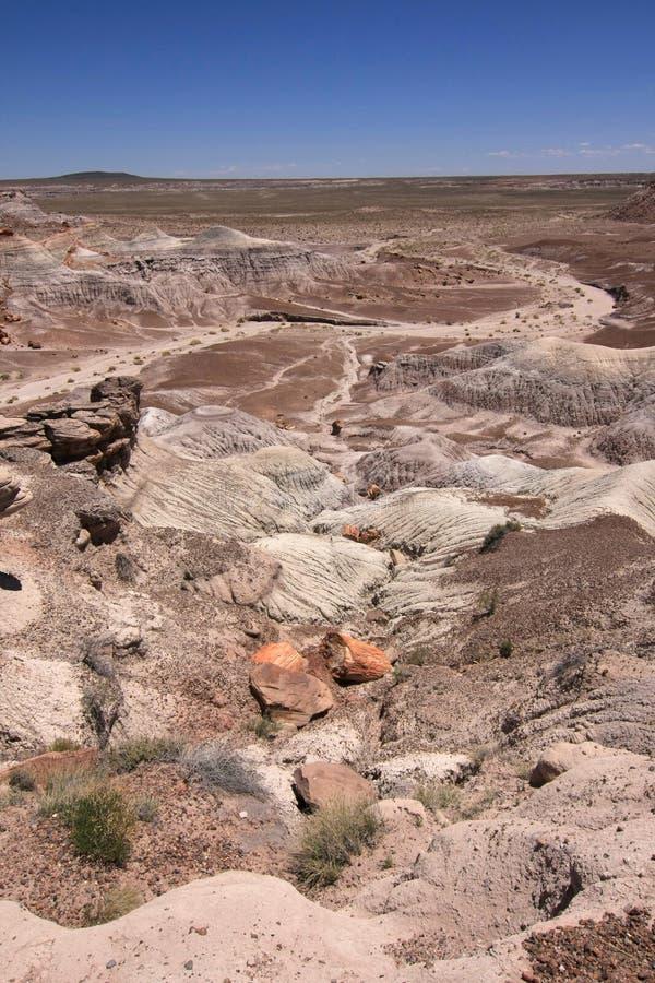 ?dl?nder der gemalten W?ste in versteinertem Forest National Park, Arizona stockfotos