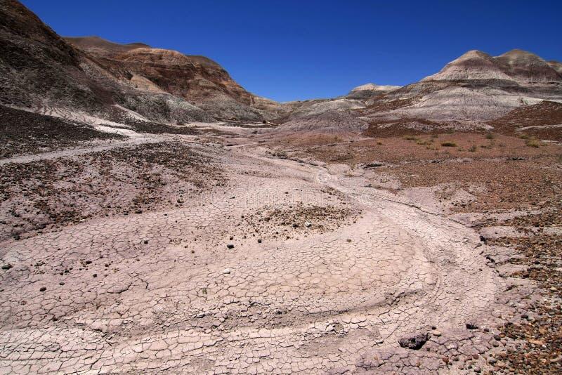 ?dl?nder der gemalten W?ste in versteinertem Forest National Park, Arizona stockfotografie