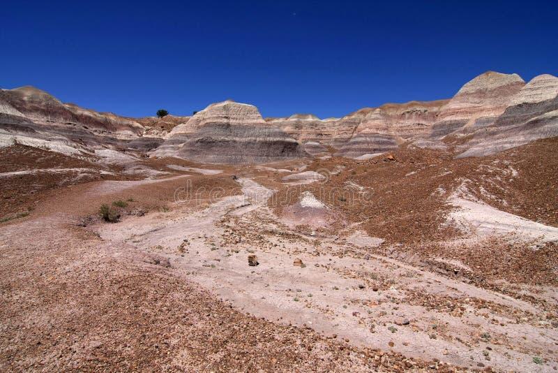 ?dl?nder der gemalten W?ste in versteinertem Forest National Park, Arizona stockbild
