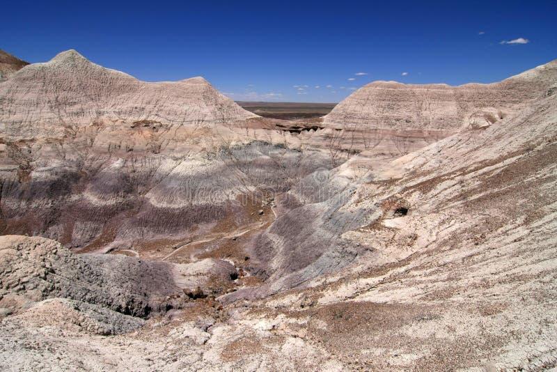 ?dl?nder der gemalten W?ste in versteinertem Forest National Park, Arizona stockbilder