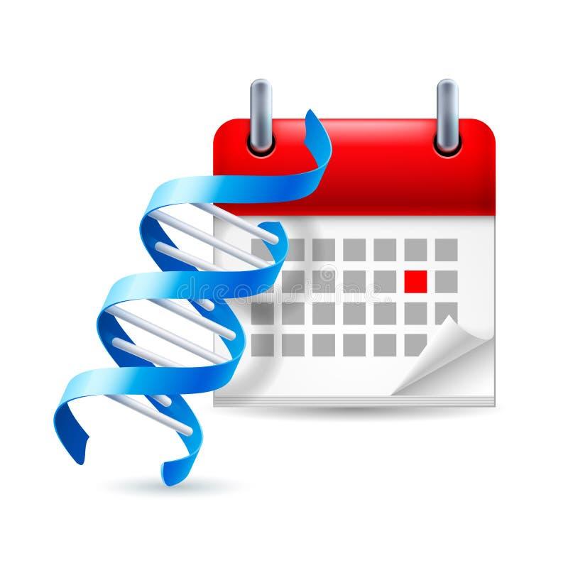 DNA και ημερολόγιο ελεύθερη απεικόνιση δικαιώματος