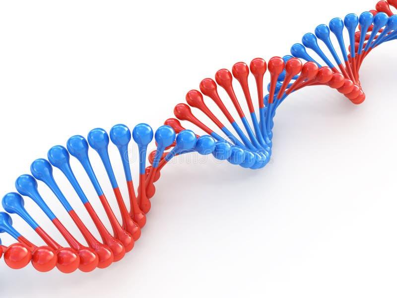 DNA κώδικα διανυσματική απεικόνιση