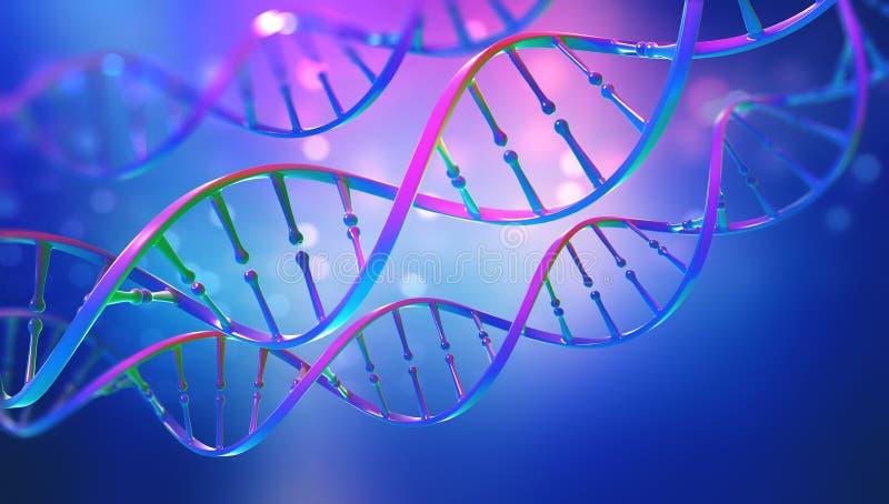 DNA Μελέτη της δομής γονιδίων του κυττάρου Δομή μορίων DNA διανυσματική απεικόνιση