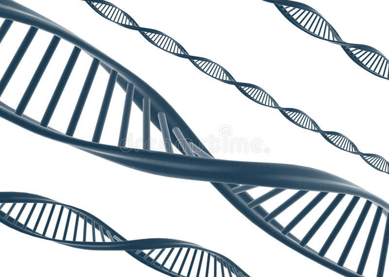 DNA. 3D render of DNA spirals isolated on white royalty free illustration