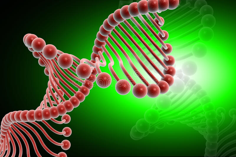 Download DNA stock illustration. Illustration of life, genetics - 16616678