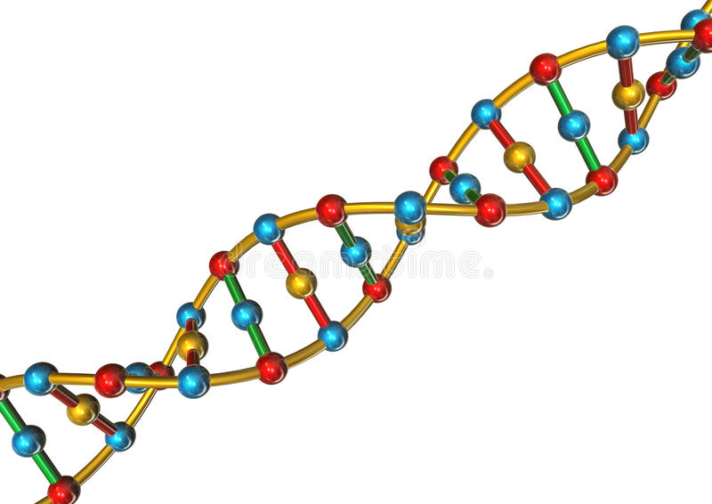 DNA stock illustration