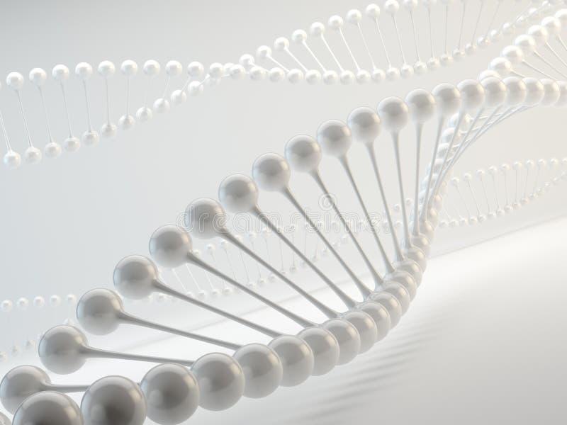 DNA vector illustratie