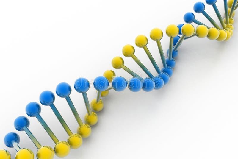 DNA lizenzfreie abbildung