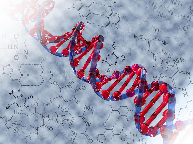 DNA. Strand over background with molecule symbols royalty free illustration