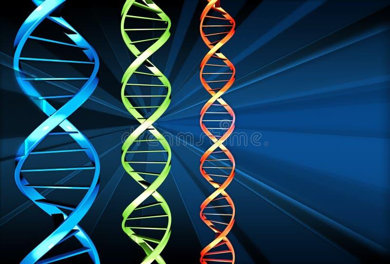 DNA x 3 stock de ilustración