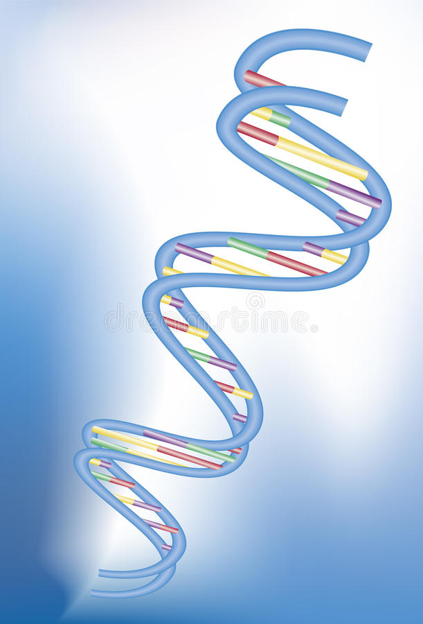 DNA - 3D stock illustration