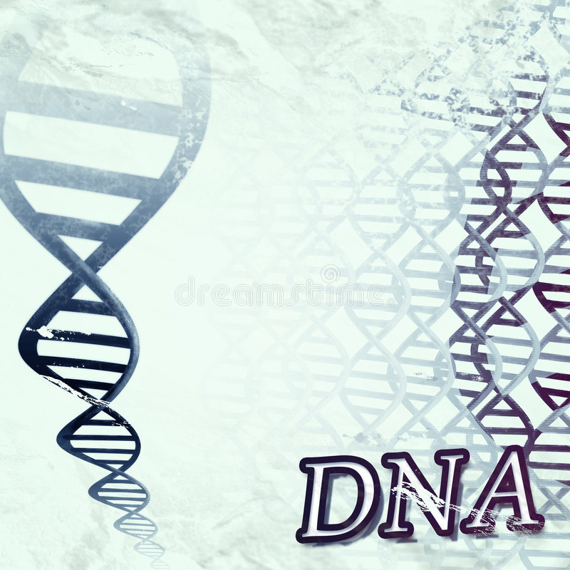 Download DNA stock illustration. Image of chain, genetic, painting - 4942630