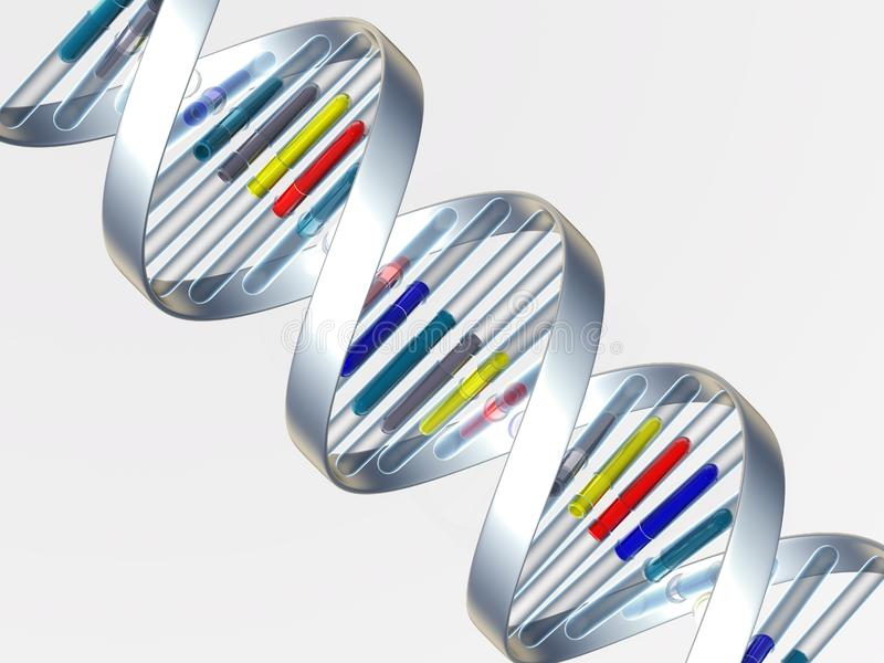 Download DNA stock illustration. Illustration of chromosome, conceptual - 8624315