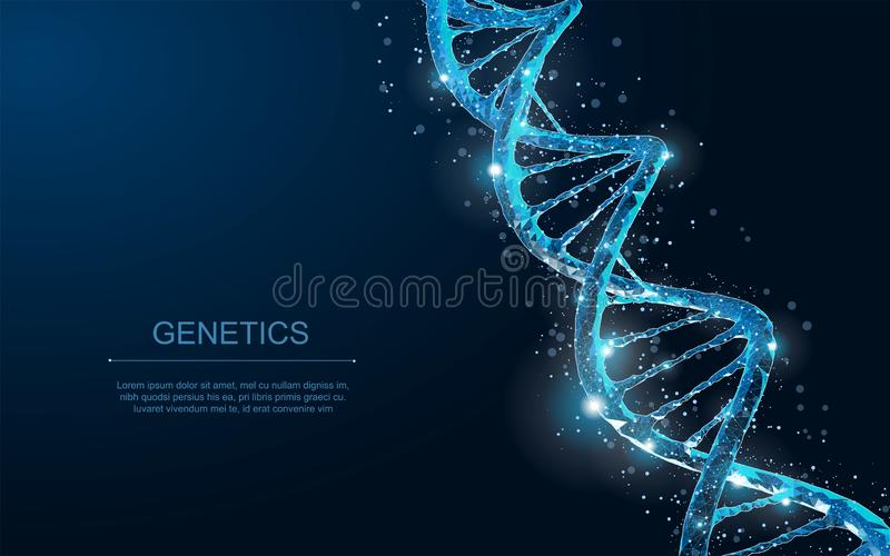 DNA. Abstract 3d polygonal wireframe DNA molecule helix spiral on blue. stock illustration