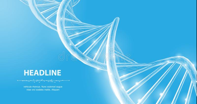DNA. Abstract 3d polygonal wireframe DNA molecule helix spiral on blue. royalty free illustration