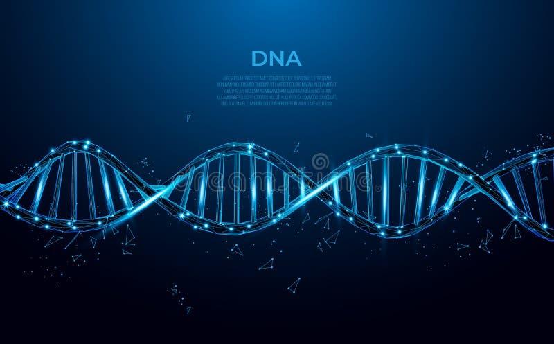 DNA. Abstrakcyjna cząsteczka wielogonowego DNA. Nauki medyczne, biotechnologia genetyczna, biologia chemiczna, koncepcja komórek ilustracji