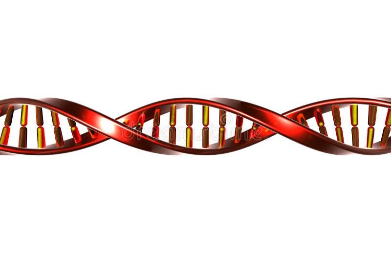 DNA auf Weiß stock abbildung
