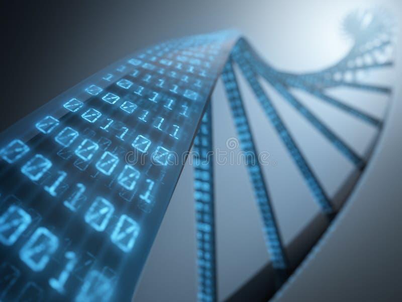 DNA Binary stock image