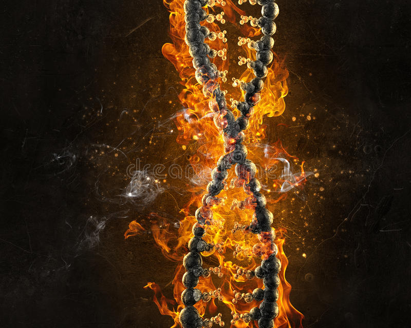 DNA burning in fire stock images
