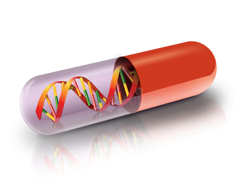 DNA in capsule vector illustratie