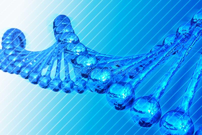 DNA Chain. 3D Render - DNA Chain Illustration. Blue Striped Background royalty free illustration
