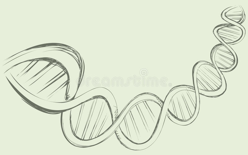 DNA chain. In develop, functioning and reproduction of living organisms and many viruses. Vector freehand ink drawn backdrop sketch in art doodle style pen on stock illustration
