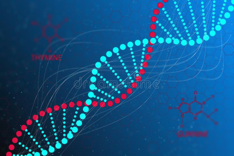 DNA-codestructuur vector illustratie