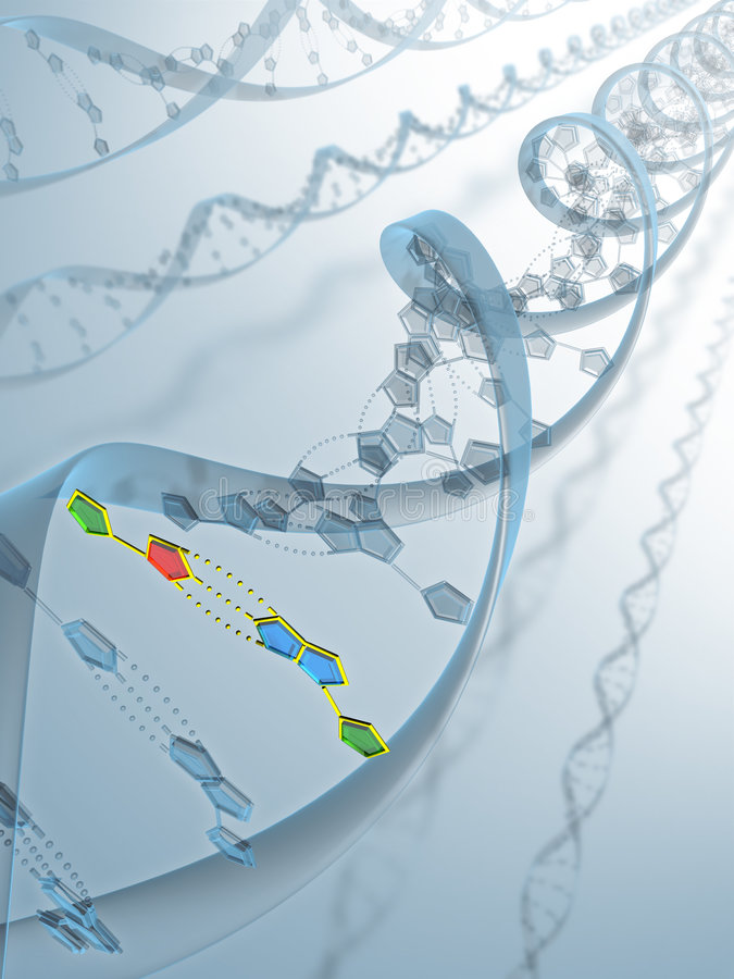 DNA Connection royalty free stock images