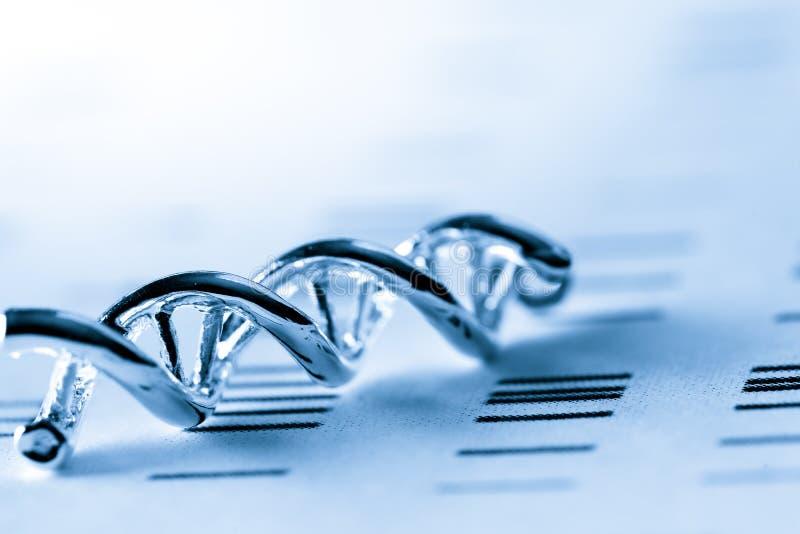 DNA, cząsteczkowy lab test zdjęcia royalty free