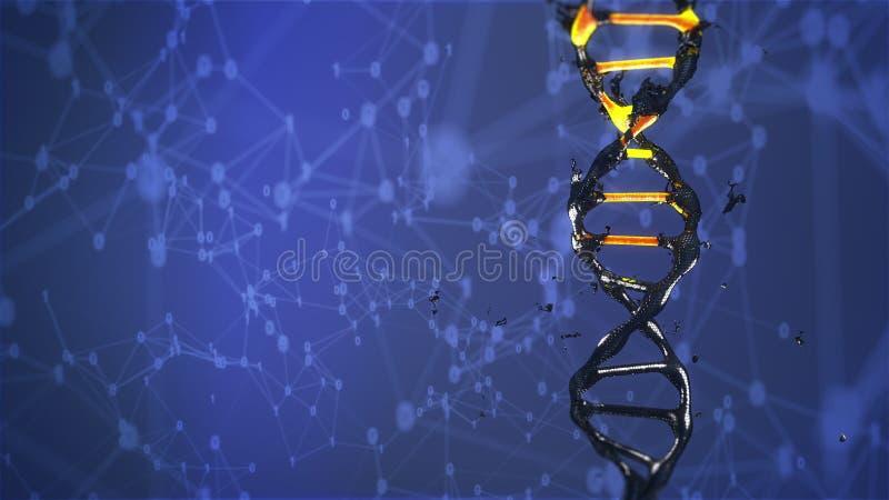 DNA-de molecule wordt vernietigd en verandert het roteren royalty-vrije stock foto's