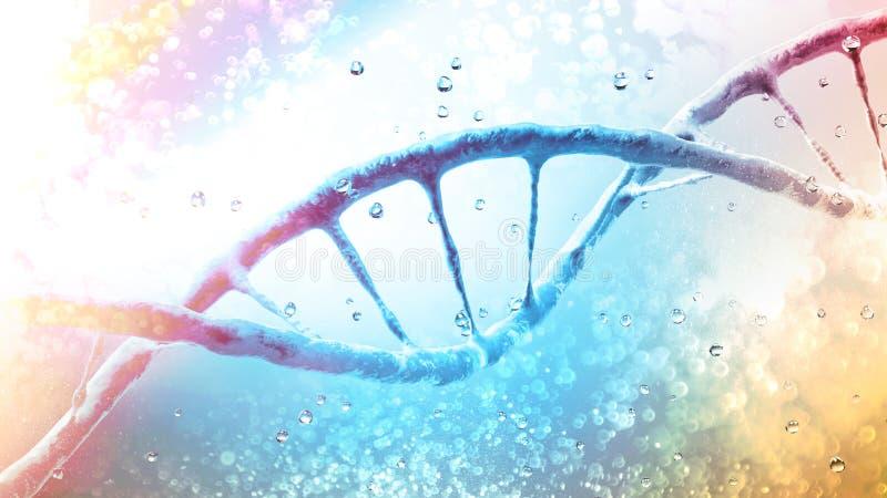 DNA-de schroef, Deoxyribonucleic zuur is een thread-like ketting van nucleotiden die de genetische instructies dragen die in de g vector illustratie