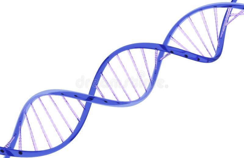 DNA del vidrio stock de ilustración