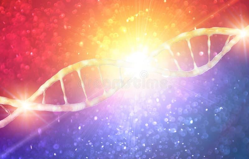 DNA, Deoxyribonucleic zuur is een thread-like ketting van nucleotiden die de genetische die instructies dragen in de groei, ontwi stock illustratie