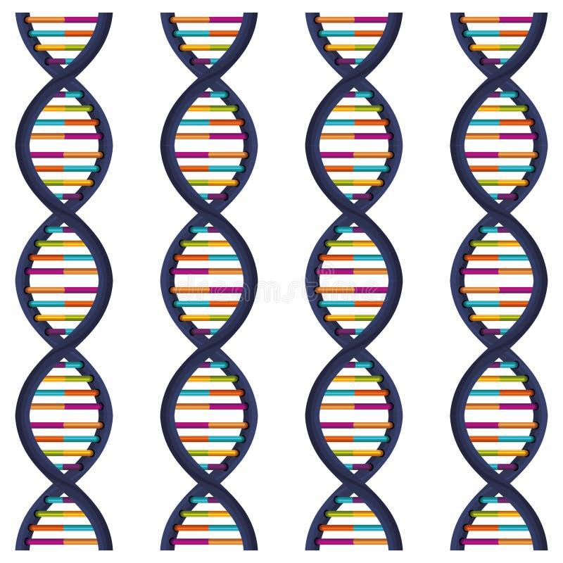 DNA di sequenza con le basi a colori illustrazione vettoriale