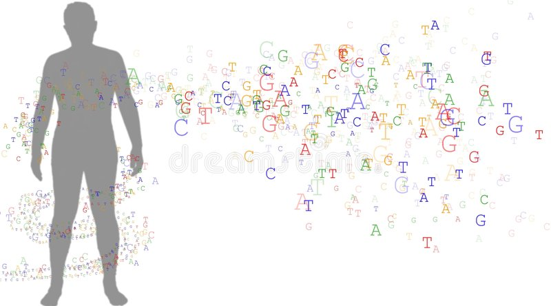 DNA ed uomo