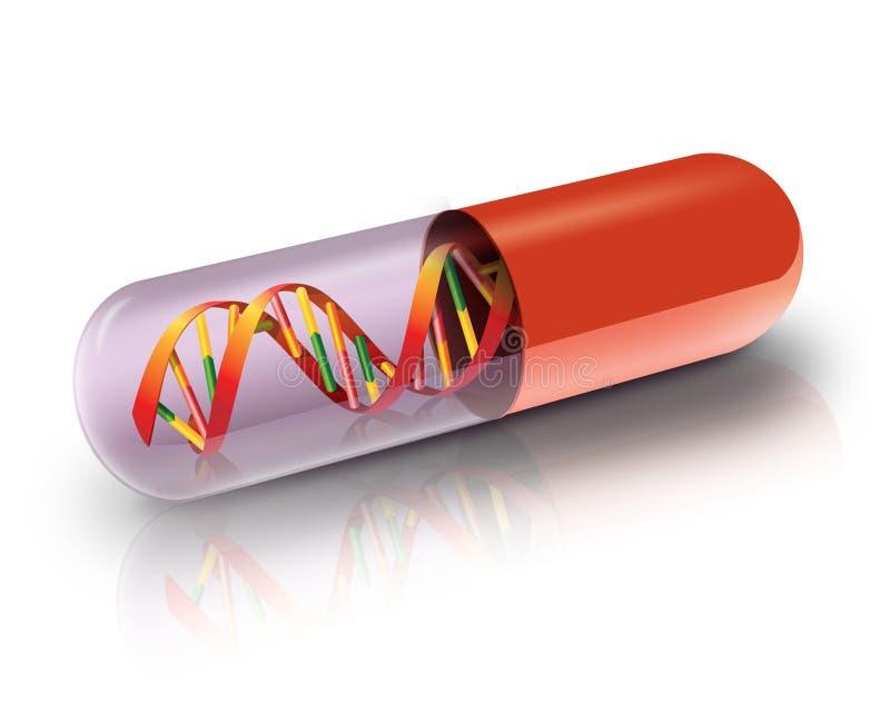 DNA en cápsula ilustración del vector