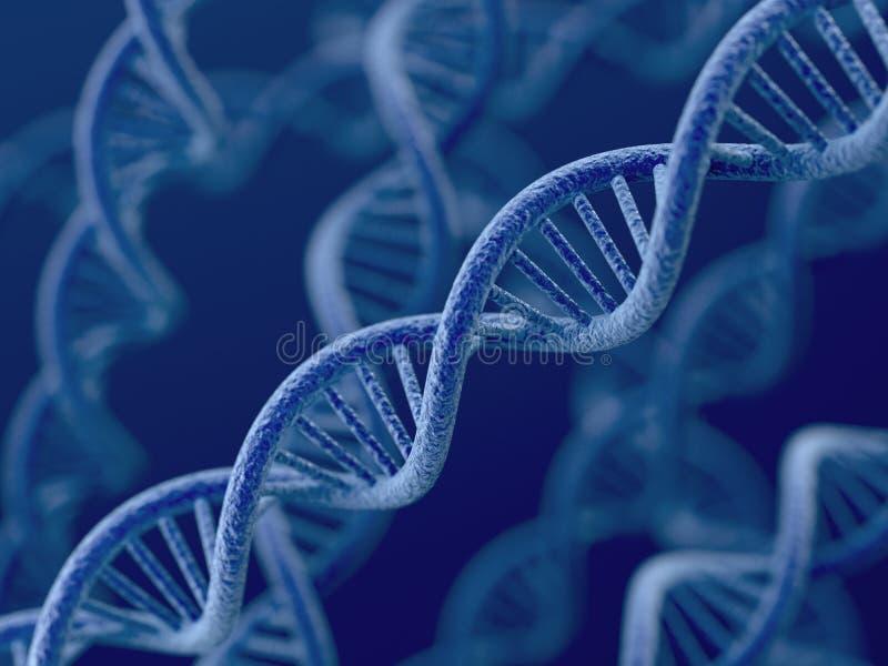 DNA en fondo azul ilustración del vector