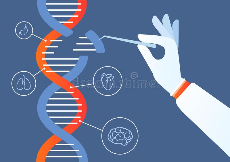 Dna engineering. Genome crispr cas9, gene mutation code modification. Human biochemistry and chromosomes research vector. Concept. Illustration of gene vector illustration